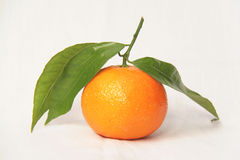 Small mandarin clementines Royalty Free Stock Photos