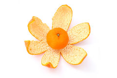 Small Mandarin Orange on Peel Royalty Free Stock Image