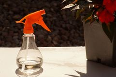 A small manual sprayer for plants, useful for sprinkling small p. Lants Stock Photography