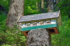 Small miniature house on a sawed tree trunk in the forest Royalty Free Stock Photography
