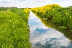 Small and mirror smooth stream in springtime Stock Photos