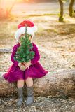 Small Mixed Race Young Baby Girl Having Fun With Baby Tree. Cute Mixed Race Young Baby Girl Having Fun With Santa Hat and Christmas Tree Outdoors On Log royalty free stock photography