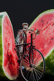 Small model of retro bicycle near ripe watermelon Stock Images