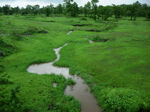 Small Monsoon Stream. A vibrant and fresh landscape with magical monsoon colors Stock Image