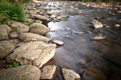 Small mountain creek Royalty Free Stock Photo