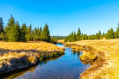 Small mountain creek meandering in the middle of meadows and forest. Sunny day with blue sky and white clouds in Jizera royalty free stock image