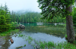 Small mountain forest lake. Stock Photo