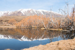 Small mountain lake in clear winter day Royalty Free Stock Photo