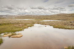 Small mountain lake - westfjords, Iceland. Stock Photos