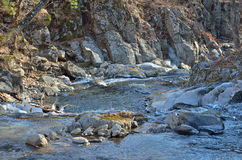 Small mountain river 6 Royalty Free Stock Photos
