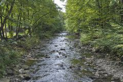 Small mountain river Stock Images