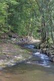 Small mountain river Royalty Free Stock Photos