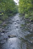 Small mountain river in Carpathians Stock Photography