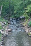 Small mountain river in Carpathians Royalty Free Stock Image