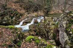 Small  mountain river Royalty Free Stock Images