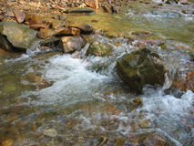 Small mountain river flow Royalty Free Stock Photography