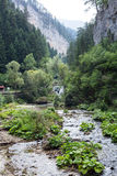 Small mountain river flowing among the steep slopes of the Rhodope Mountains Royalty Free Stock Images