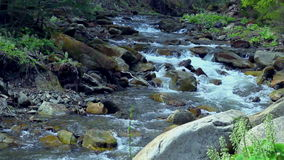 Small mountain river. Landscape with stream flowing between rocks and trees stock footage
