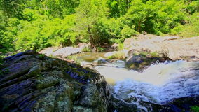 Small Mountain River among Rocks against Green Tropical Plants. Small stormy foamy mountain river cascade among rocks against bright green tropical plants stock video