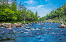 Small mountain river Royalty Free Stock Photo
