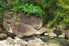 A small mountain river in a tropical jungle. Beautiful bright la Stock Image