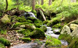 A small mountain river with a waterfall in the German national park Harz. Spring green mountain forest