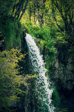 Small mountain river waterfall Stock Image