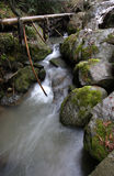 Small mountain stream. A fast flowing stream in the mountains Royalty Free Stock Photo