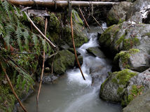Small mountain stream. A swift flowing stream in the mountains Stock Photography