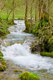 Small Mountain Stream Royalty Free Stock Photos
