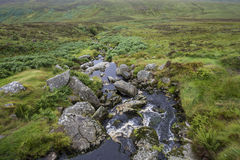A small mountain stream in the meadow in Ireland Royalty Free Stock Images