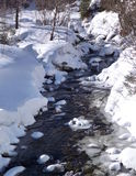 Small mountain stream in the melting snow Stock Photography