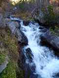 Small mountain stream in the shadow Stock Photography