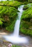 Small mountain stream Royalty Free Stock Photo
