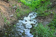 Small mountain water stream, flowing through woods Royalty Free Stock Image