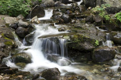 Small mountain waterfall among the rocks. Water in motion Royalty Free Stock Photos