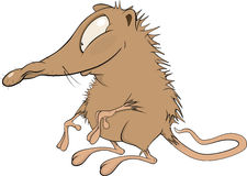 Small mouse.Cartoon. Little shaggy brown mouse with a ridiculous nose Royalty Free Stock Photo