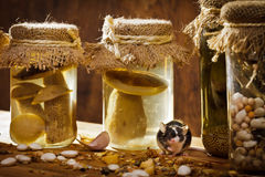 Small mouse with jars stock photo