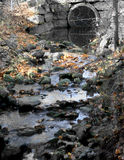 Small muddy stream,Milner conservation area Royalty Free Stock Images
