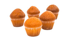 Small muffins Stock Photography