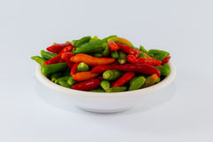 Small multiple color chilies ready on dish for cook Stock Photography