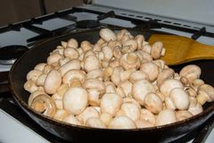 Small mushrooms fried in a pan as a whole. Fried mushrooms with onions. Royalty Free Stock Images