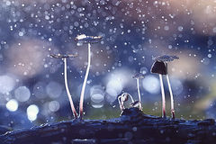 Small mushrooms toadstools Royalty Free Stock Photo