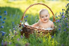 Small naked smiling child sitting in a basket Stock Photography