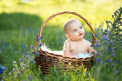 Small naked smiling child sitting in a basket Stock Images