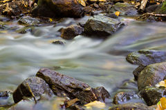 Small Natural Creek. Natural Stream in the Area of Waterfall Stock Photos