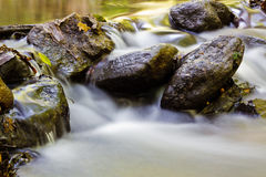 Small Natural Creek. Natural Stream in the Area of Waterfall Royalty Free Stock Photo