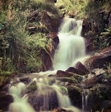 Small natural spring waterfall in the mountains at summer. Stock Photography
