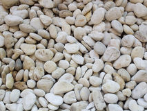 Small naturally polished white rock pebbles background Royalty Free Stock Photo