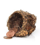 Small Nest Egg Royalty Free Stock Photo